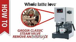Gaggia Milano RI9303/47 Classic Pro Espresso Machin